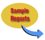 Car Chip Pro sample reports text and arrow